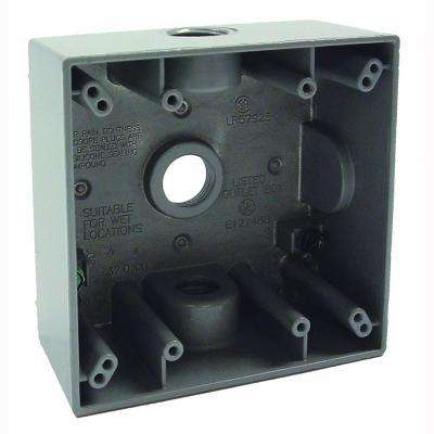 Gray 2-Gang Weatherproof Box with Three 1/2 in. Threaded Outlets
