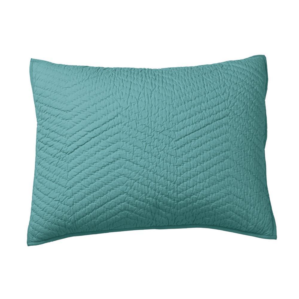 Company Cotton Aqua Solid Standard Sham