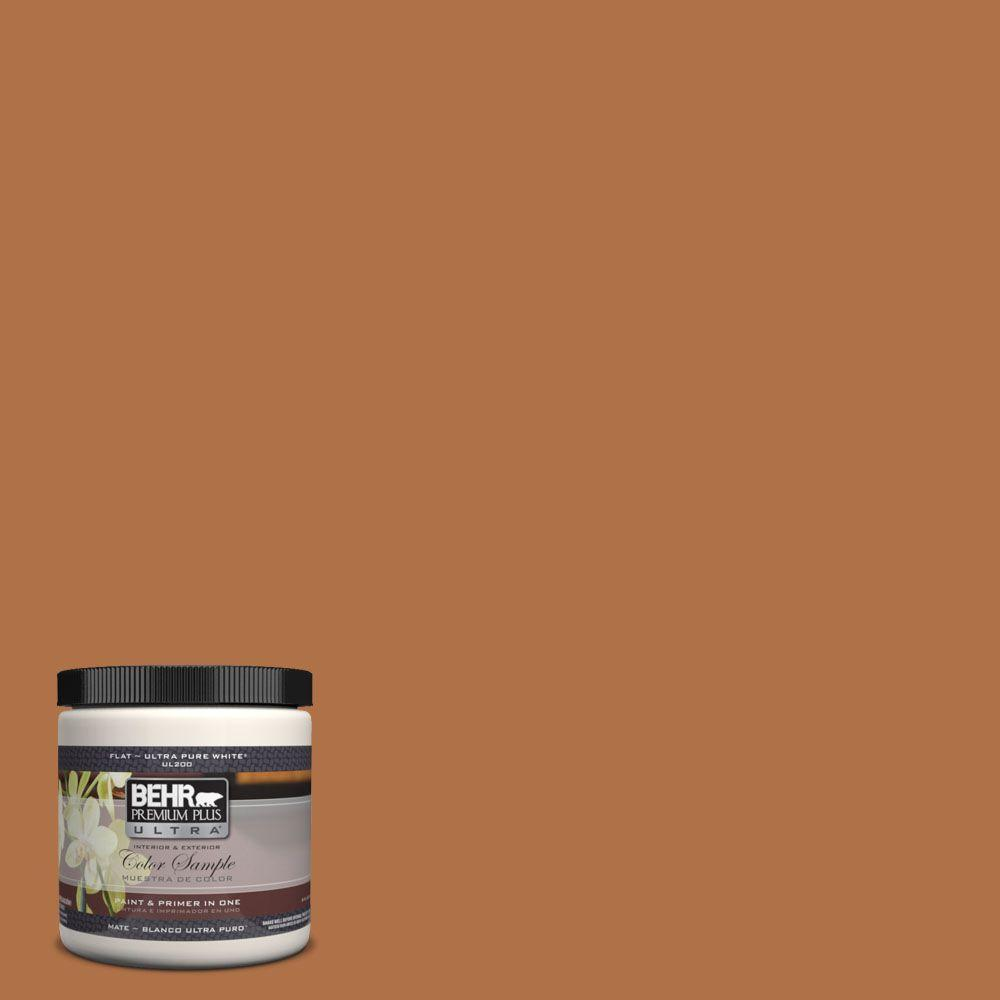Pmd 41 Copper Mine Matte Interior Exterior Paint And Primer In One Sample
