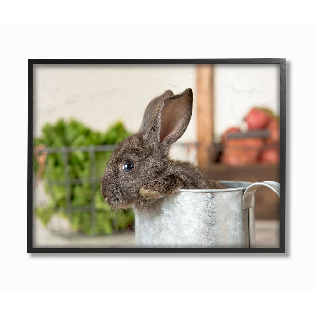 The Stupell Home Decor Collection 11 In X 14 Brown Bunny