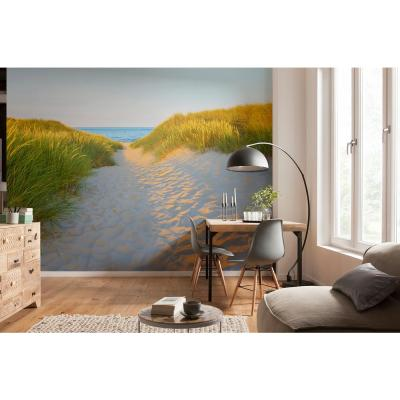 Beach Sandy Path Wall Mural