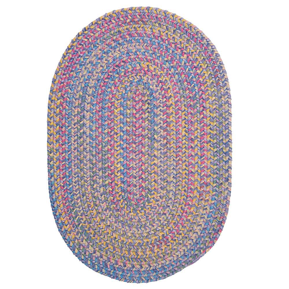 Home decorators collection seabrook chenille amethyst 4 ft for Home decorators chenille rug