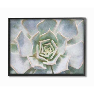 "16 in. x 20 in. ""Succulent Plant Gentle Morning Dew Painting"" by Joshua Chace Framed Wall Art"