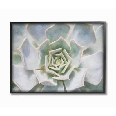 """16 in. x 20 in. """"Succulent Plant Gentle Morning Dew Painting"""" by Joshua Chace Framed Wall Art"""
