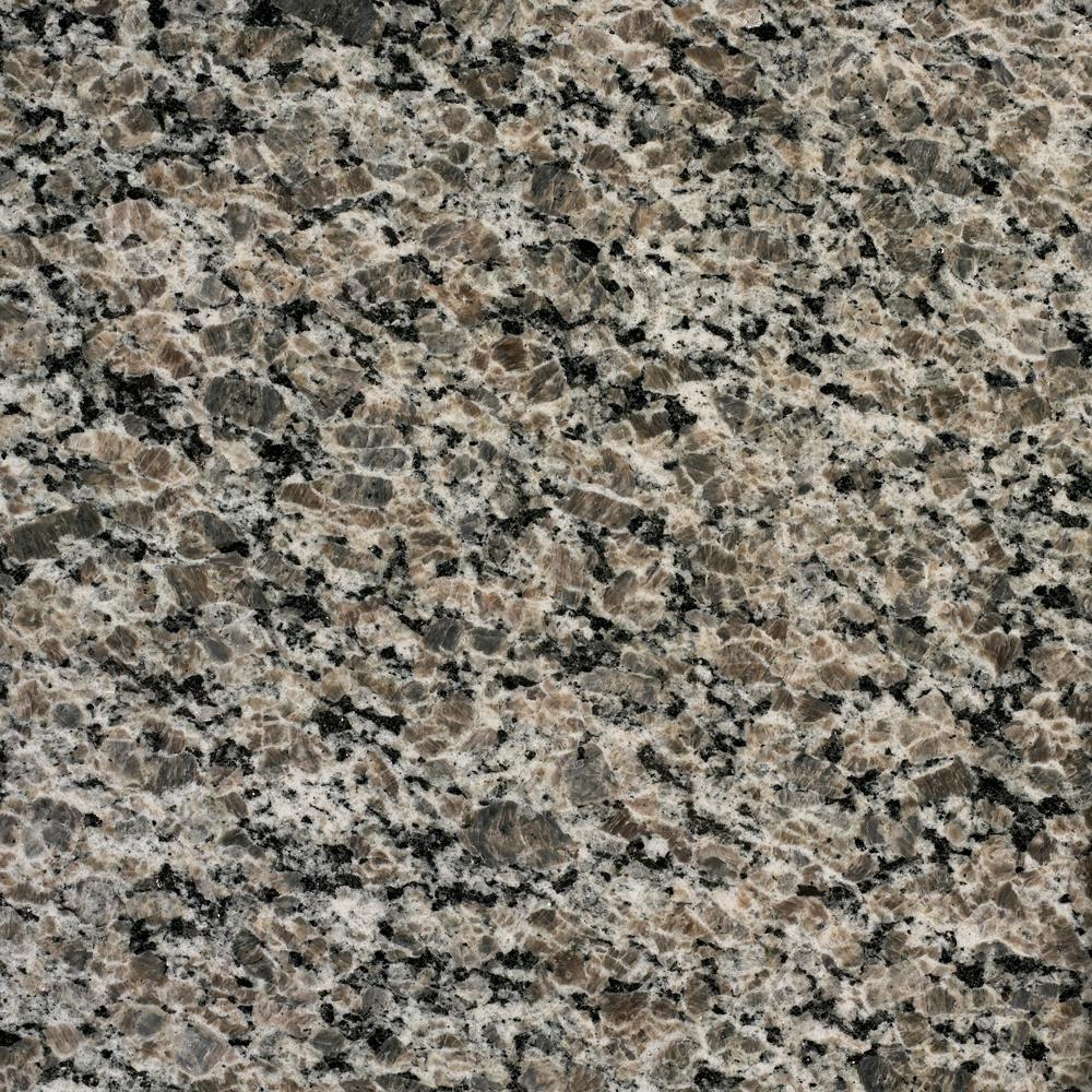 Stonemark Granite 3 in. x 3 in. Granite Countertop Sample in New Caledonia
