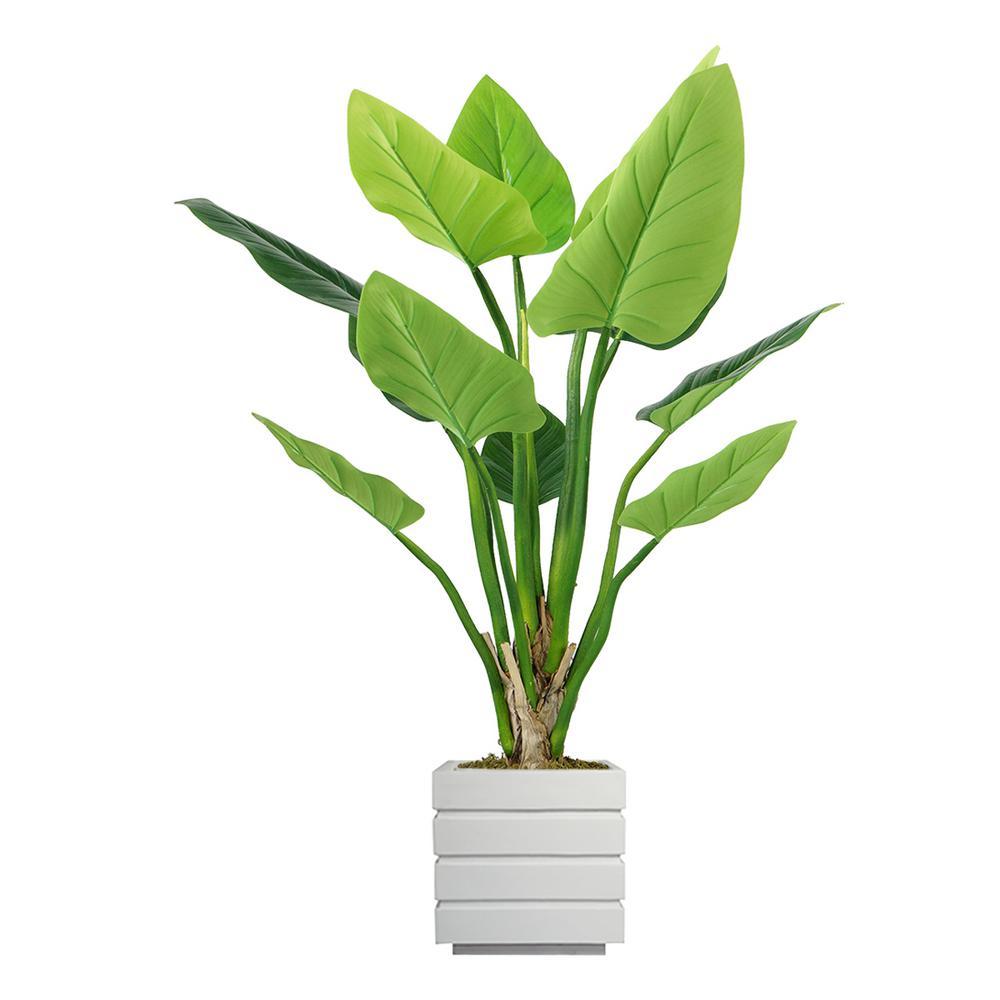 54 in. Philodendron Erubescens Green Emerald in Fiberstone Planter