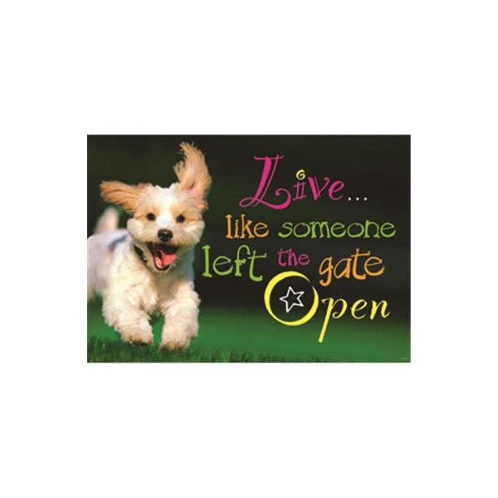 TREND ENTERPRISES INC. Live Like Someone Left the Gate Open Argus