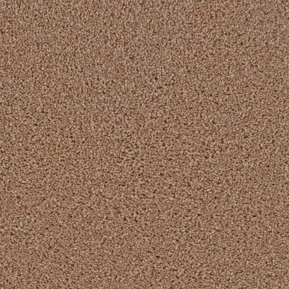 Hot Shot Ii Color Tuscan Texture 12 Ft Carpet H2004 402
