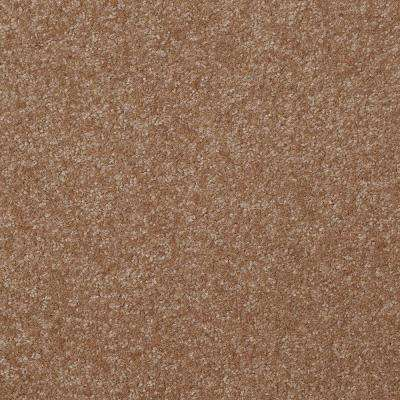 Carpet Sample - Kingship I - Color Barnwood Texture 8 in. x 8 in.