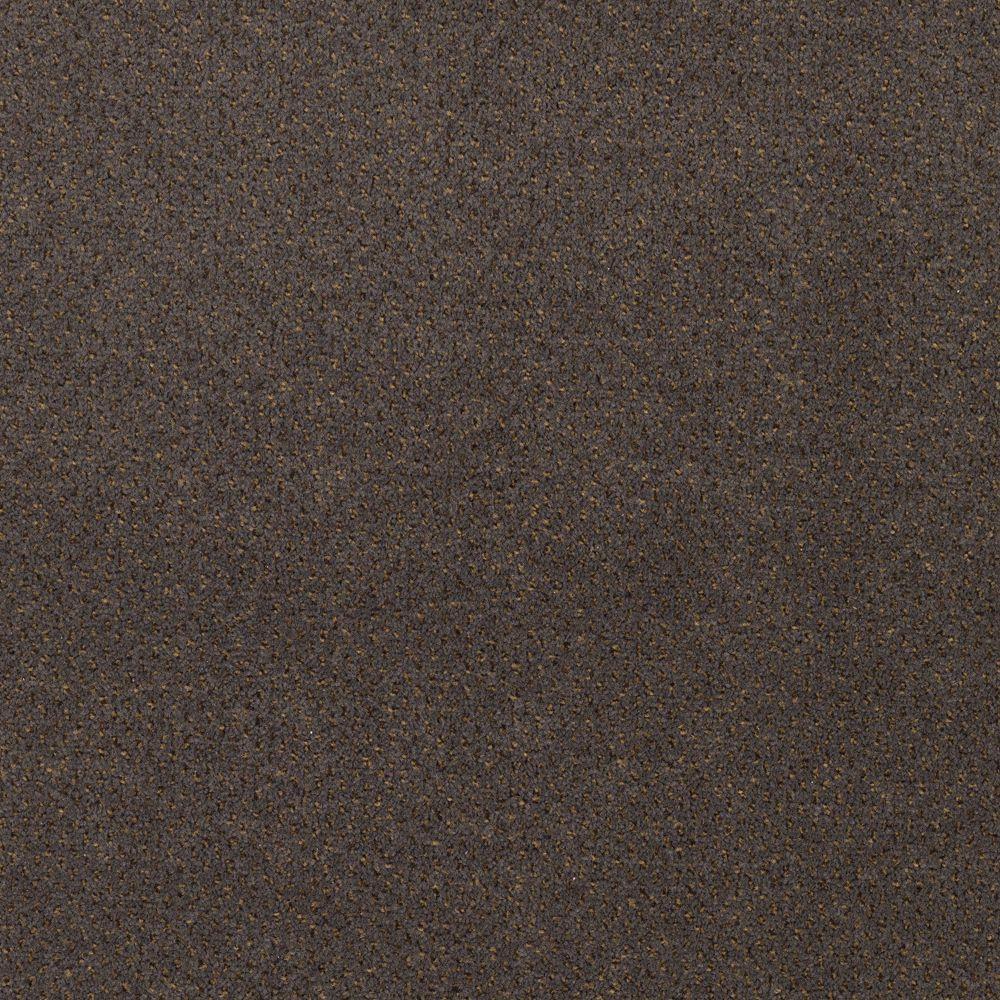 TrafficMASTER Market Share - Color Granite 12 ft. Carpet