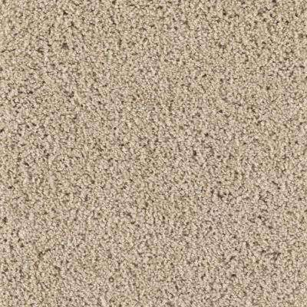 Carpet Sample - Ashcraft I - Color Nutria Texture 8 in. x 8 in.