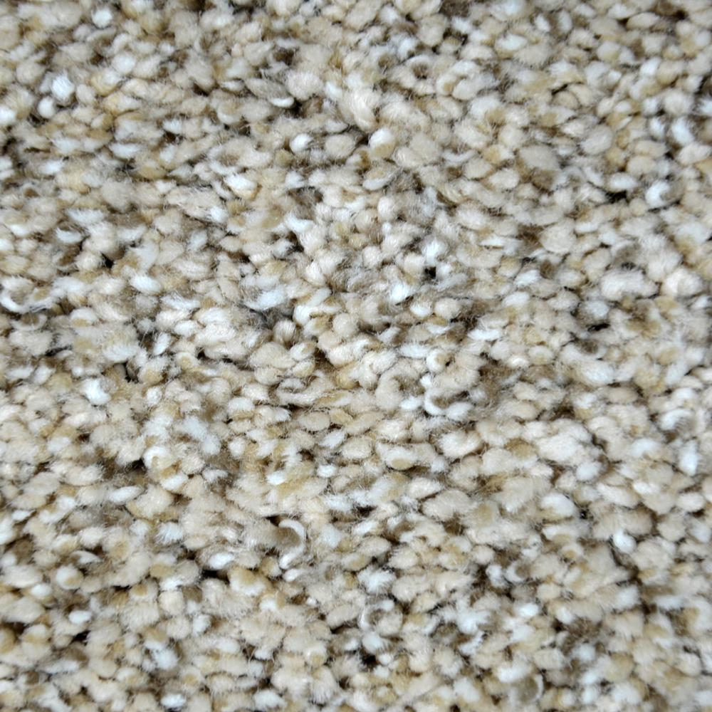 Lifeproof Carpet Sample Immaculate Ii Color Modest
