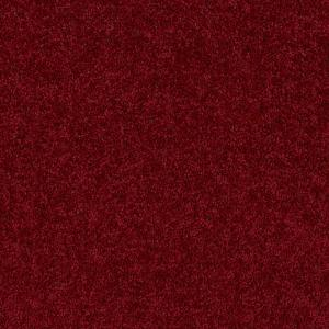 Trafficmaster Alpine Color Romance Texture 15 Ft Carpet