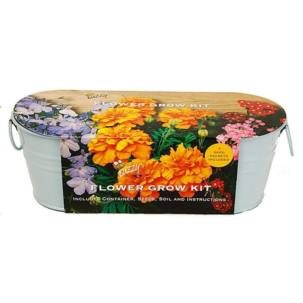 Buzzy Flower Windowsill Grow Kit 94332 The Home Depot