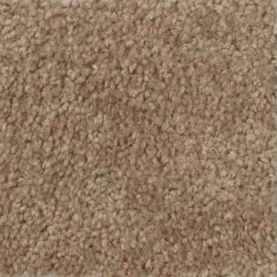Carpet Sample-Hot Shot II -Color Tuscan Texture 8 in. x 8 in.