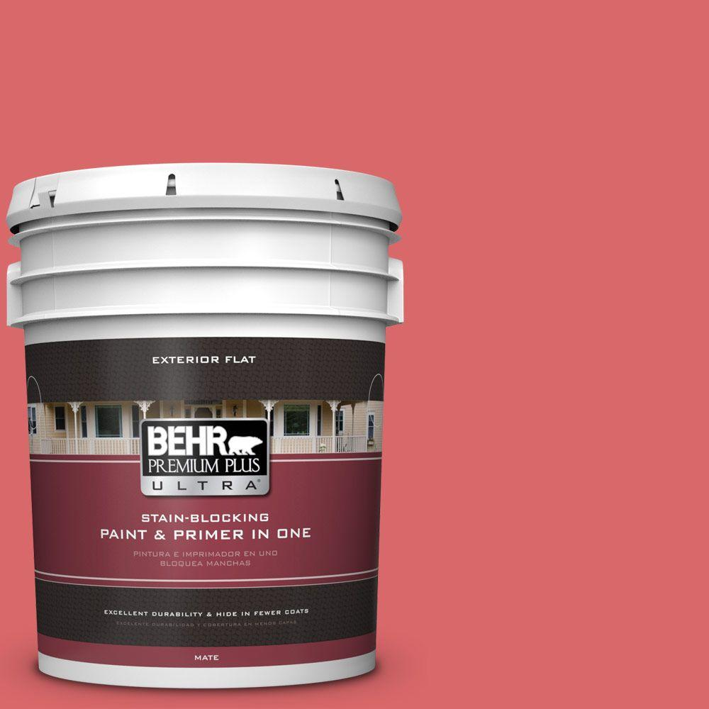 5-gal. #160B-6 Coral Expression Flat Exterior Paint