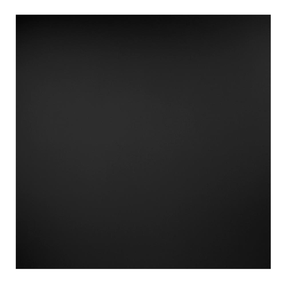 Genesis 2 Ft X 2 Ft Smooth Pro Black Ceiling Tile 740 07 The
