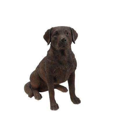 Brown Labrador Retriever Sitting