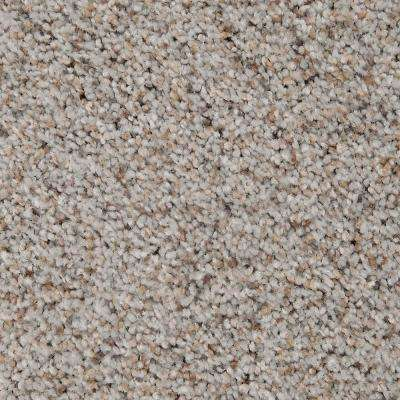 Carpet Sample - Riley I - Color Navigator Textured 8 in. x 8 in.