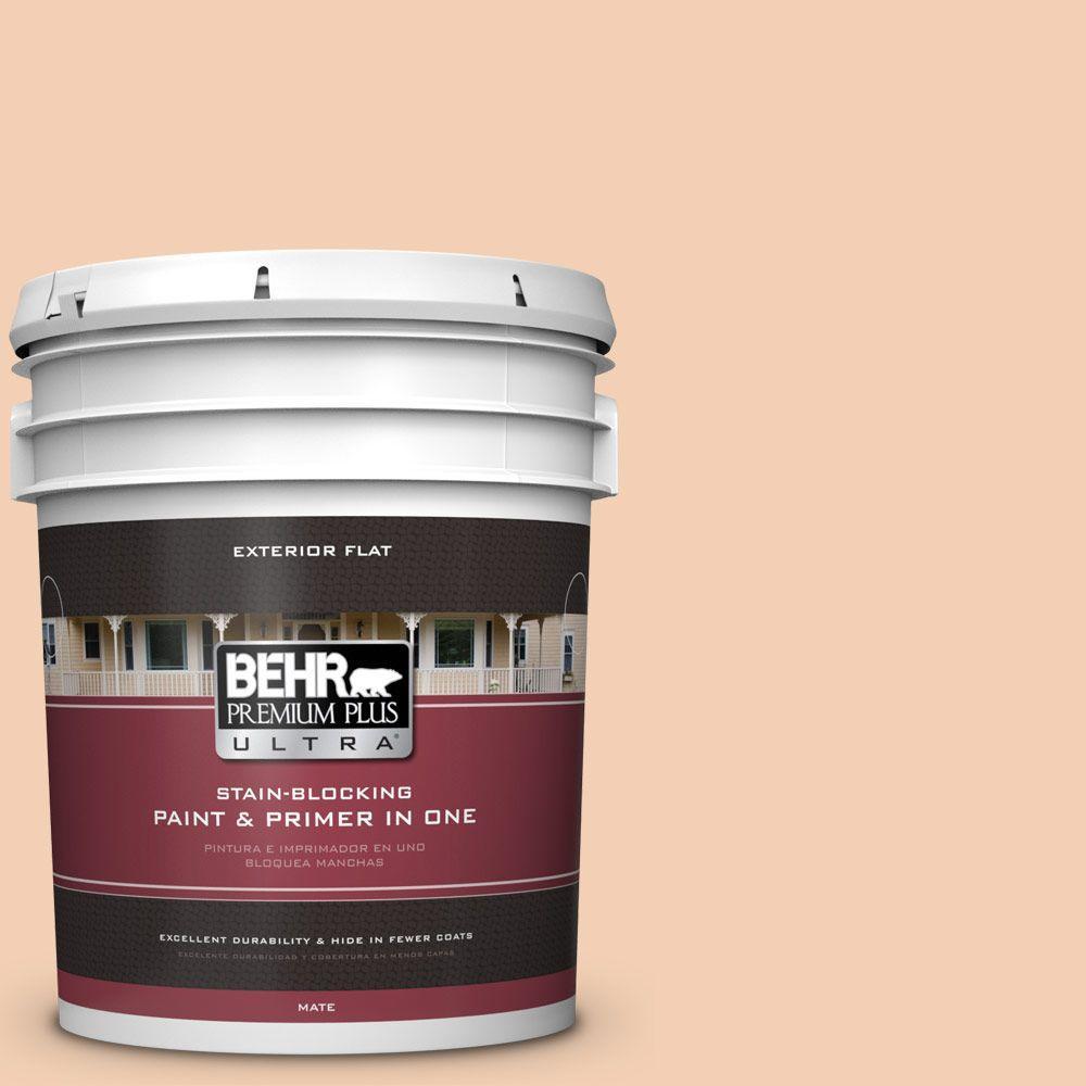BEHR Premium Plus Ultra 5-gal. #PPU3-7 Pale Coral Flat Exterior Paint