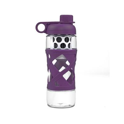 22 oz. Water Bottle with Built in Filter System in Plum Purple