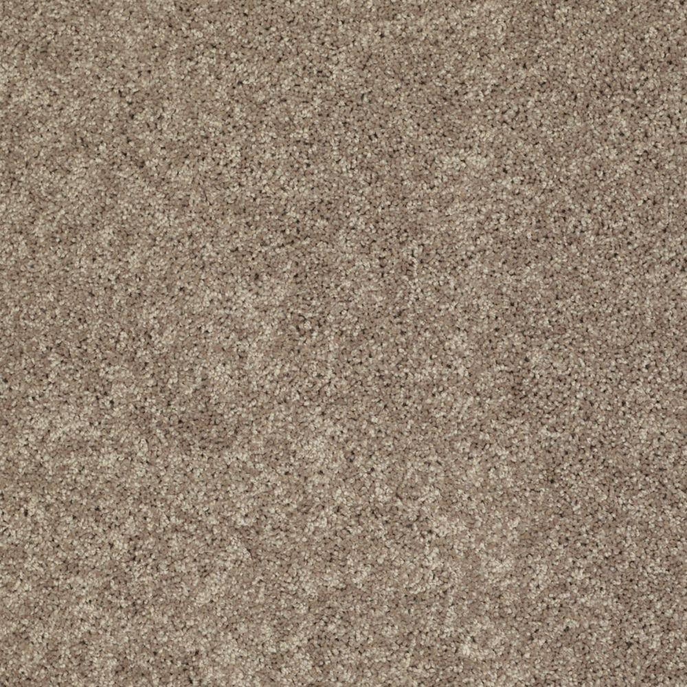 Trafficmaster Palmdale I Color Cobblestone 15 Ft Carpet