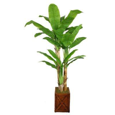 81 in. Tall Banana Tree with Real Touch Leaves in 13 in. Fiberstone Planter