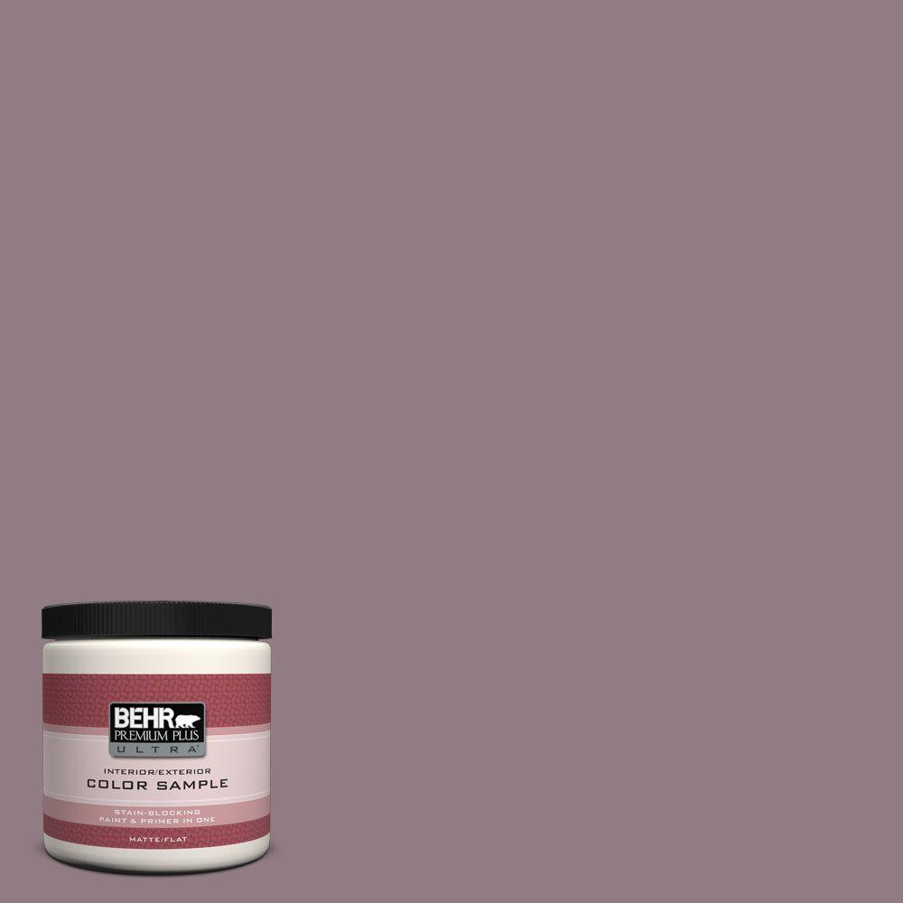 BEHR Premium Plus Ultra 8 oz. #100F-5 Gypsy Magic Interior/Exterior Paint Sample