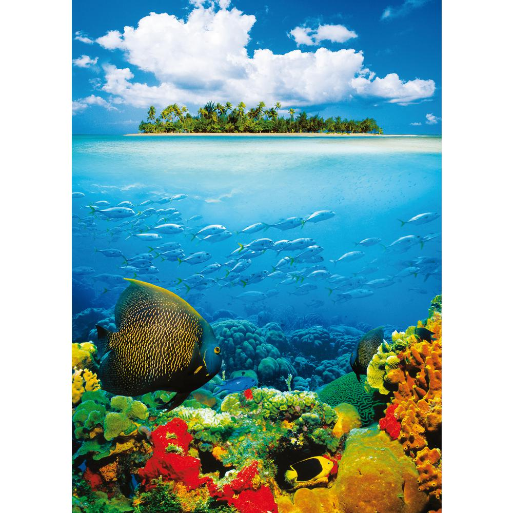100 in. x 0.25 in. Treasure Island Wall Mural