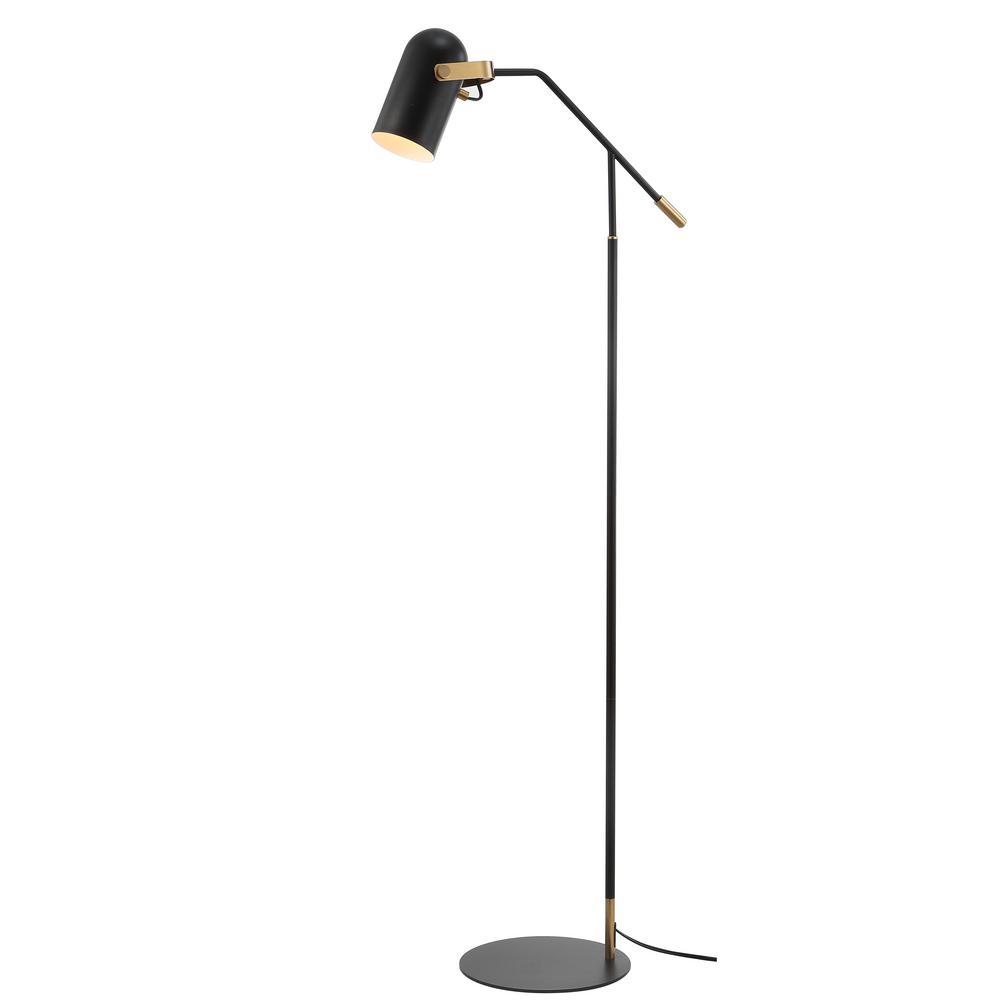 Black Br Gold Metal Led Floor Lamp
