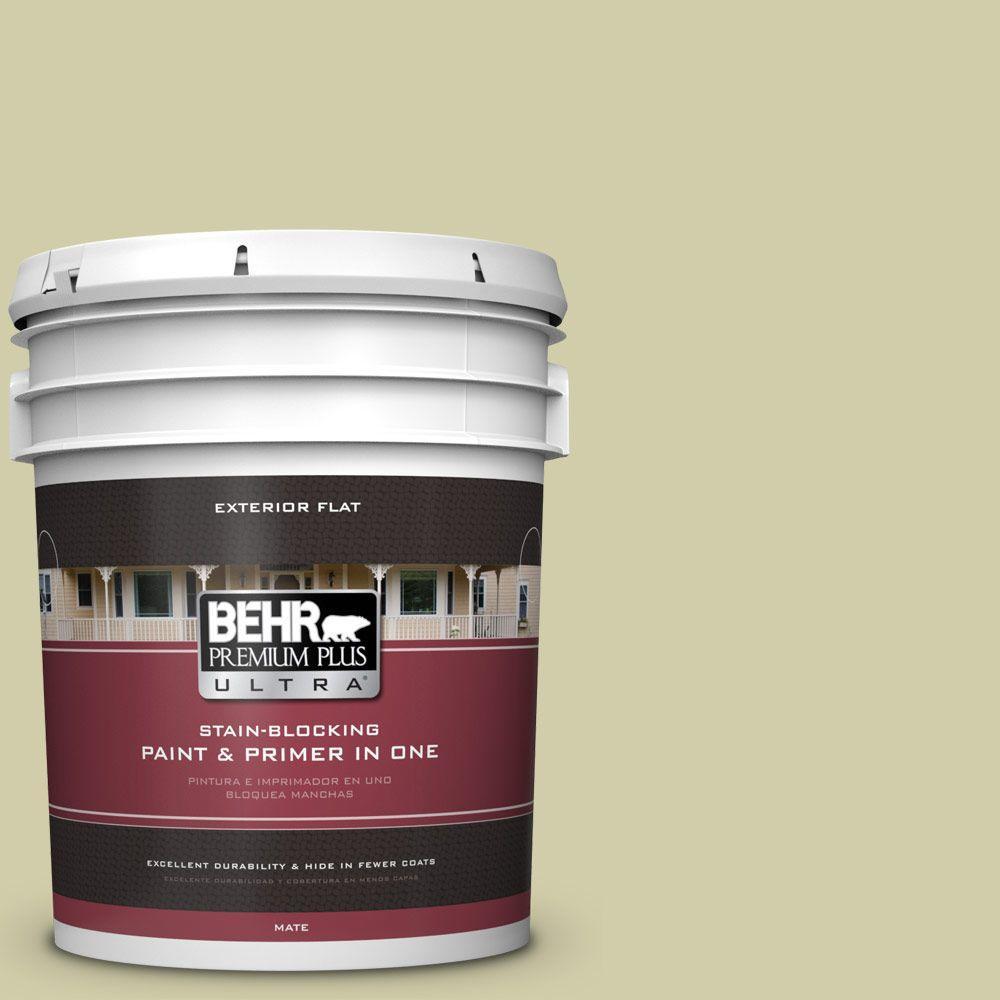 BEHR Premium Plus Ultra 5-gal. #S340-3 Hybrid Flat Exterior Paint