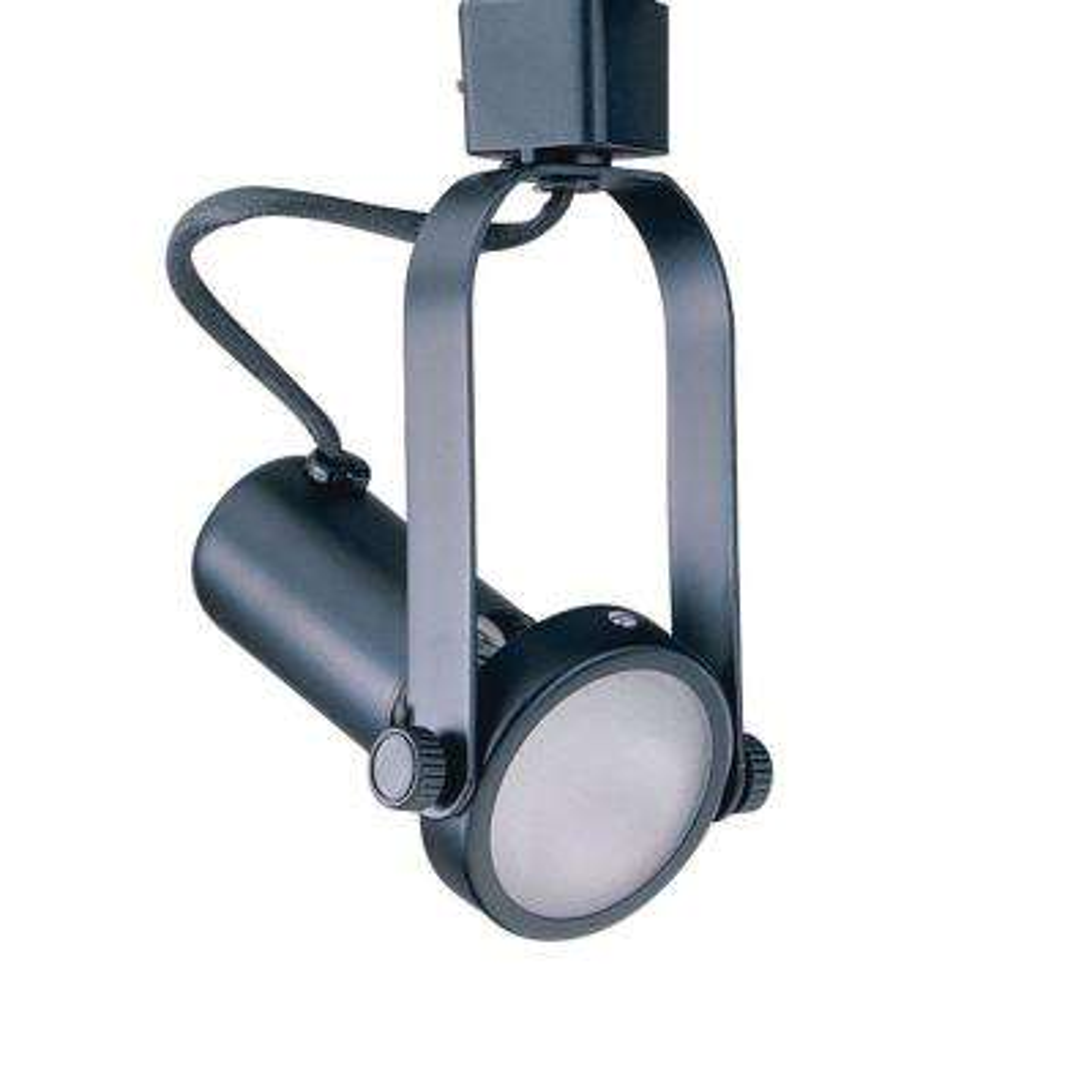 Par 20 Black Gimbal Ring Track Lighting Fixture