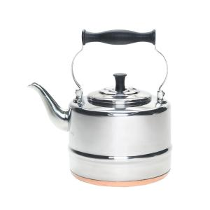 Click here to buy BonJour 8-Cup Stovetop Tea Kettle in Silver by BonJour.