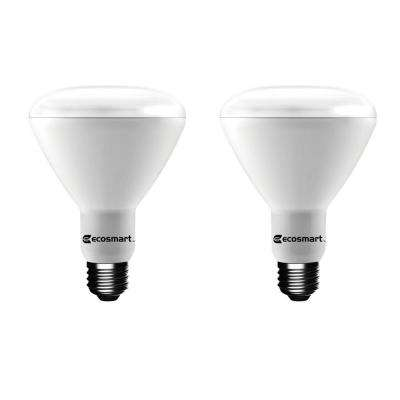 75W Equivalent BR30 Dimmable LED Light Bulb, Soft White (2-Pack)