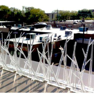 25 ft  Original Plastic Bird Spikes Coverage Pigeon Bird Repellent