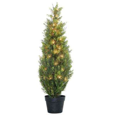 36 in. Arborvitae in Green Grower's pot with 50 Clear Lights
