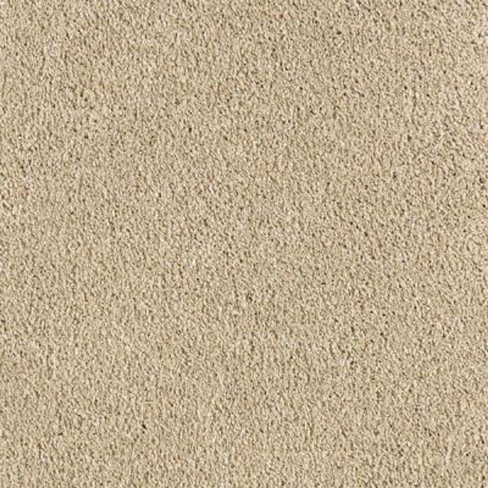 Lifeproof Carpet Sample Pagliuca I Color Tender Tan
