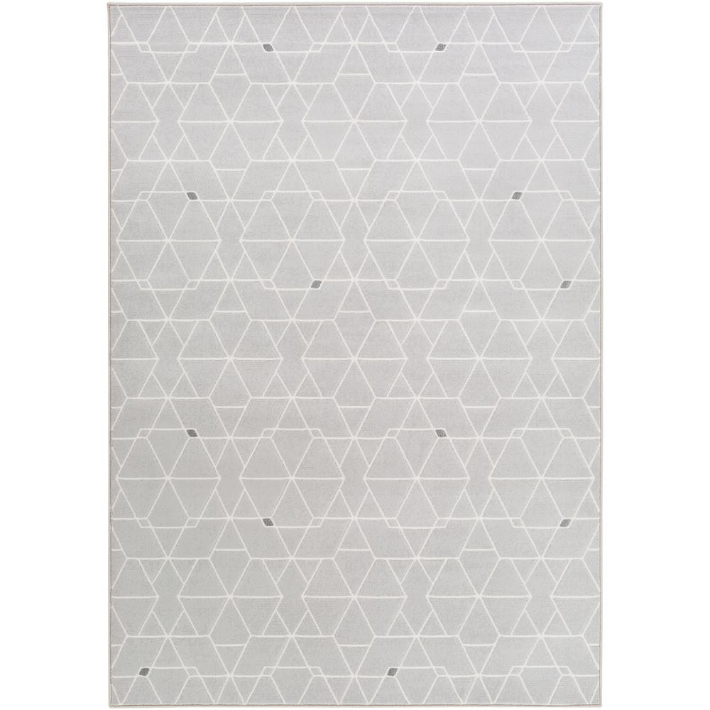 Larisa Light Gray 5 ft. x 8 ft. Indoor Area Rug