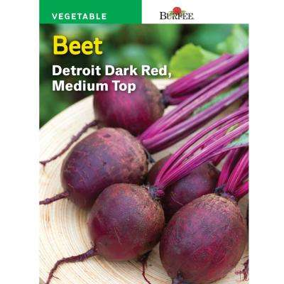 Beet Detroit Dark Red Medium-Top Seed