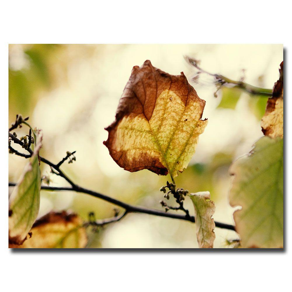 16 in. x 24 in. Leaves Canvas Art