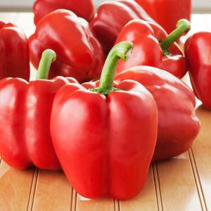 4.5 in. Bell-Red Pepper