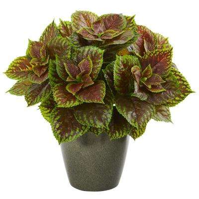 20 in. Coleus Artificial Plant in Green Planter (Real Touch)