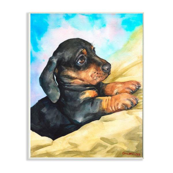 Stupell Industries 12 In X 18 In Cute Dachshund Puppy Dog Pet By George Dyachenko Wood Wall Art Pwp 246 Wd 12x18 The Home Depot