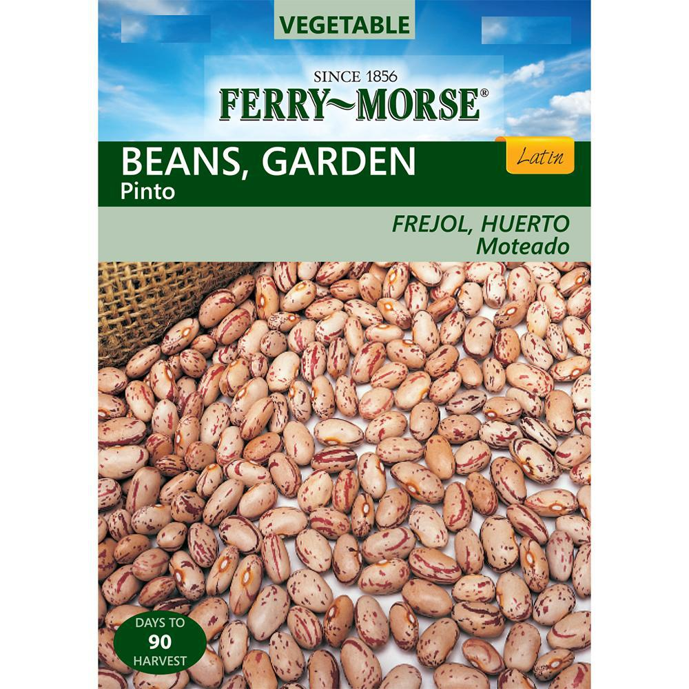 Ferry Morse Bean Pinto Seed 2249 The Home Depot