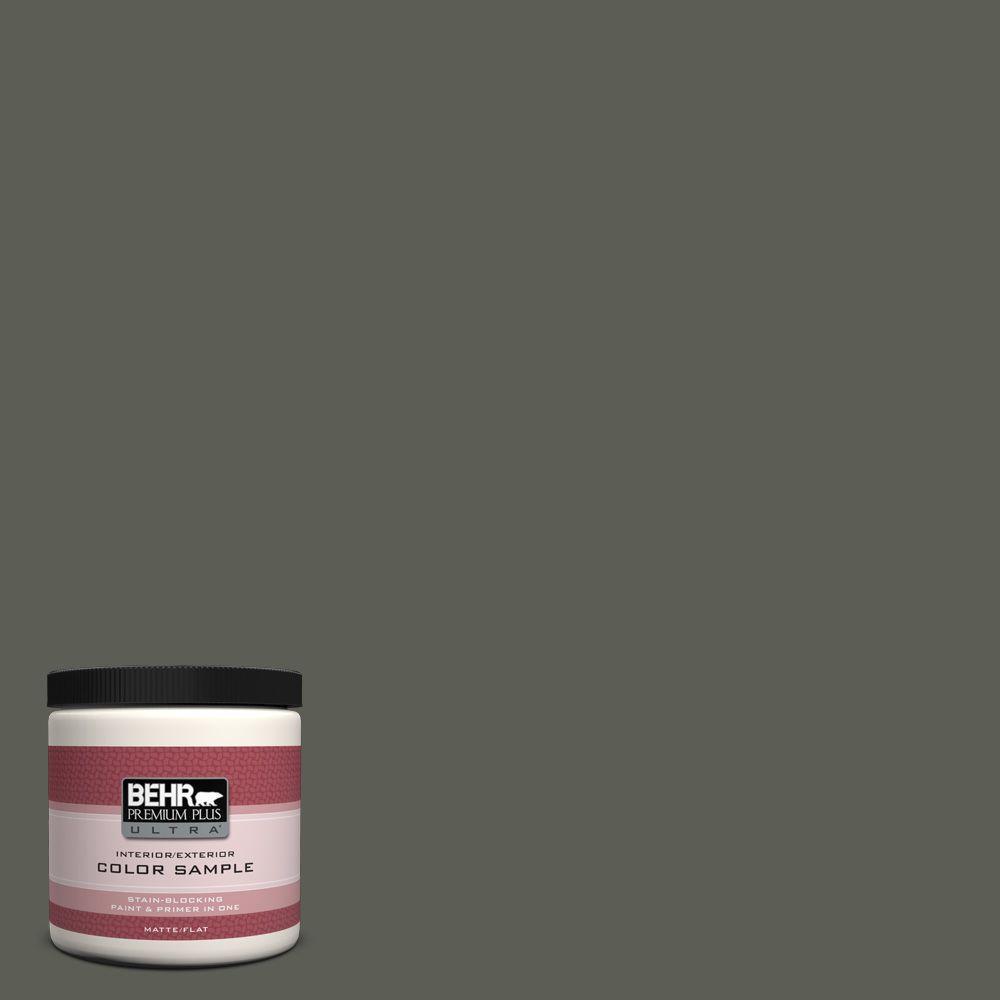 BEHR Premium Plus Ultra 8 oz. #N380-7 Black Bamboo Interior/Exterior Paint Sample
