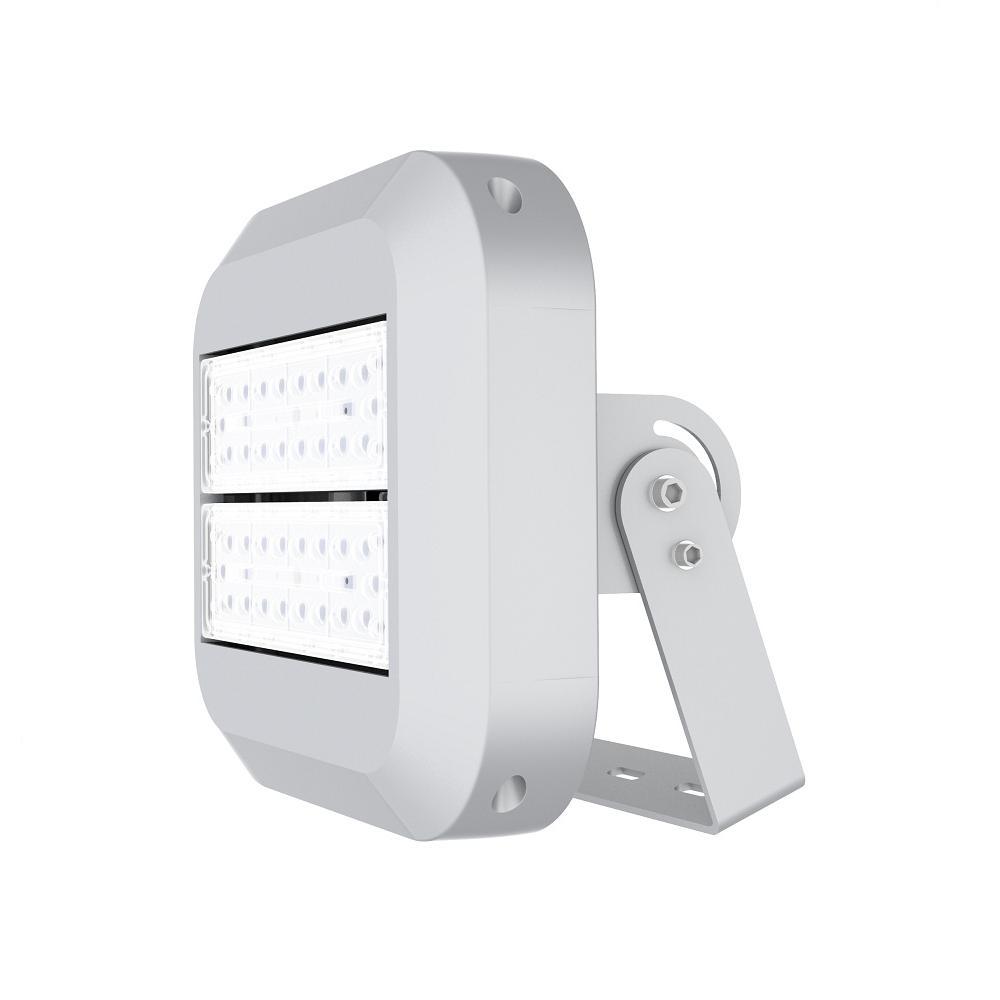 100-Watt Waterproof (IP67) Silver Integrated LED Outdoor Landscape Flood Light with 5700K