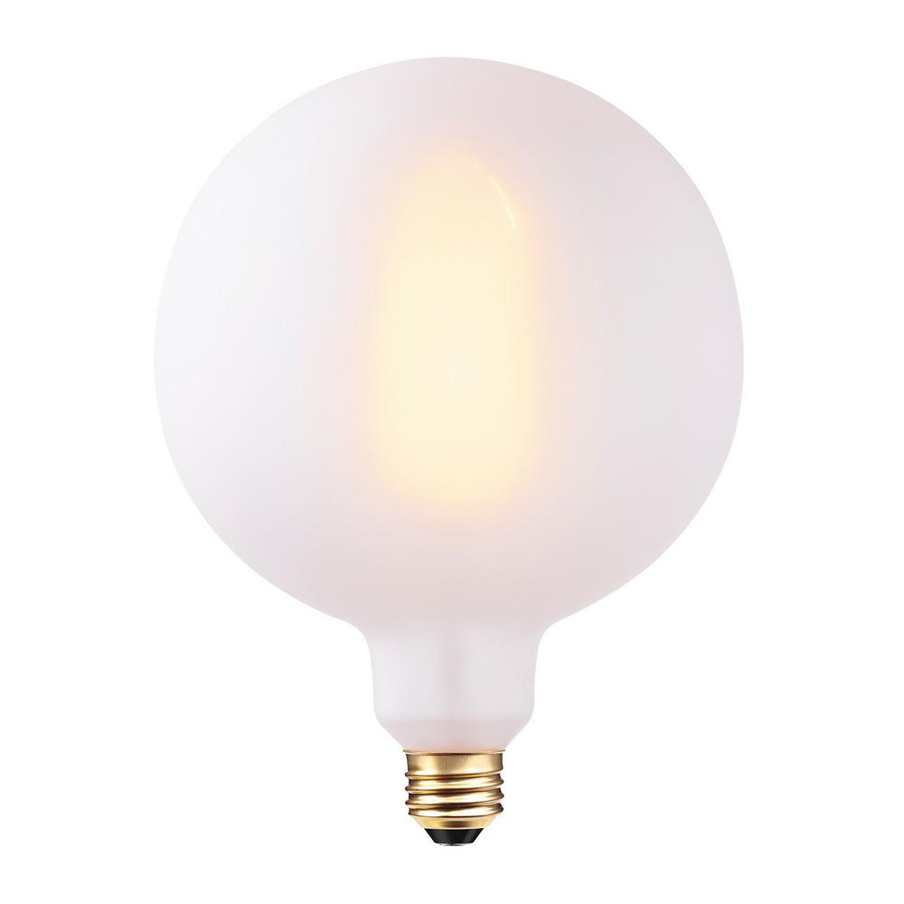 60-Watt G150 Oversized Vintage Edison Incandescent Light Bulb