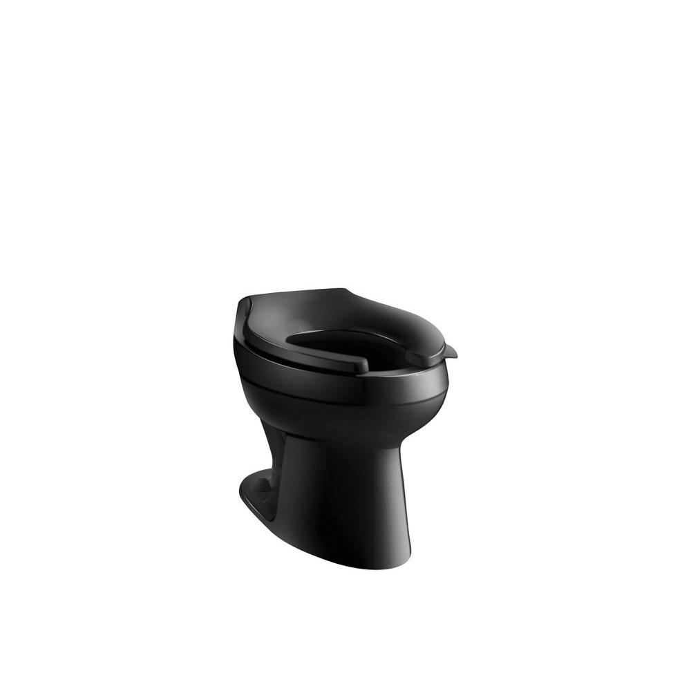 Wellworth Elongated Toilet Bowl Only in Black Black