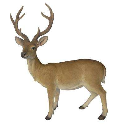 Deer Buck Large