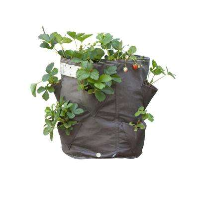 BloemBagz Strawberry Planter Grow Bag 9 Gallon Amaranth